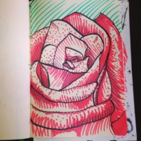 Sam Osborne illustration Sketchbooks - Rose