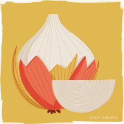Sam Osborne Illustration Inspiration Onion