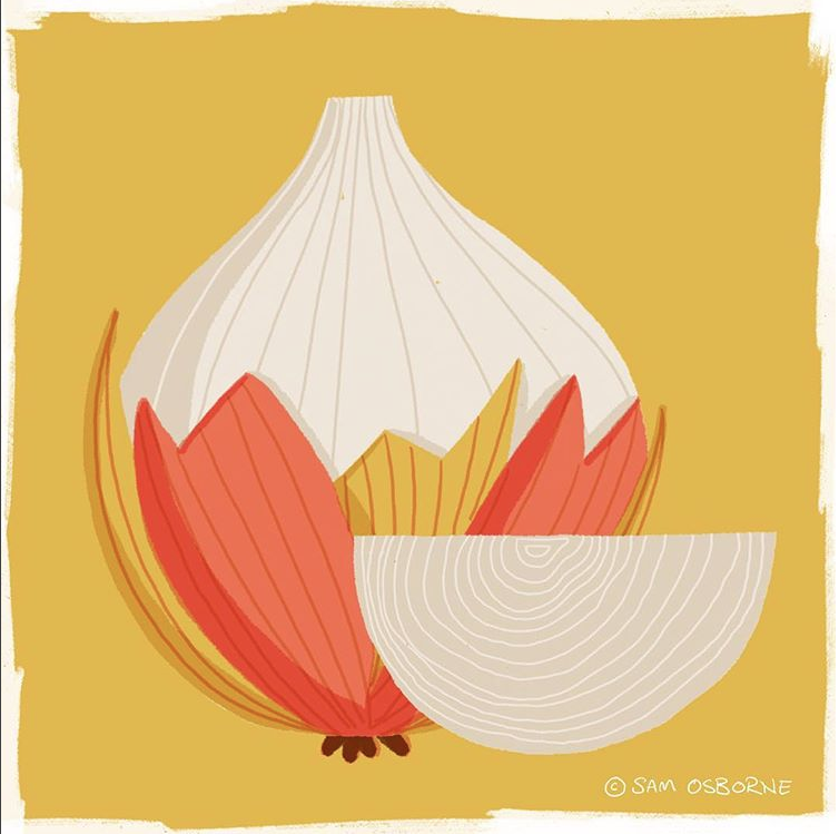 Sam Osborne Illustration Inspiration Onion