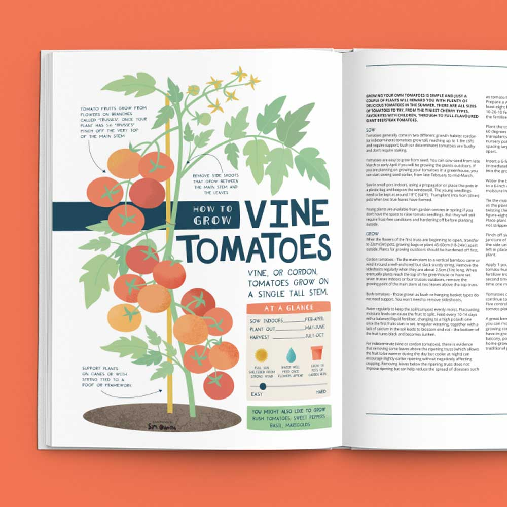 How To Grow Tomatoes Book Illustration