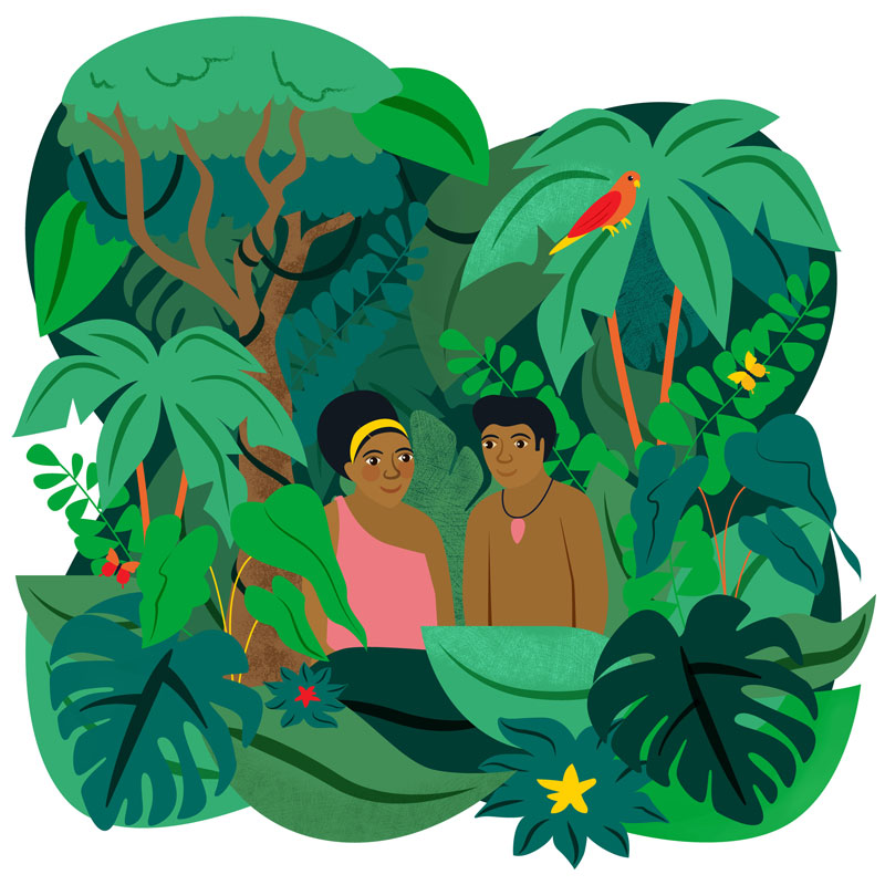 Save The Rainforest Charity Illustration